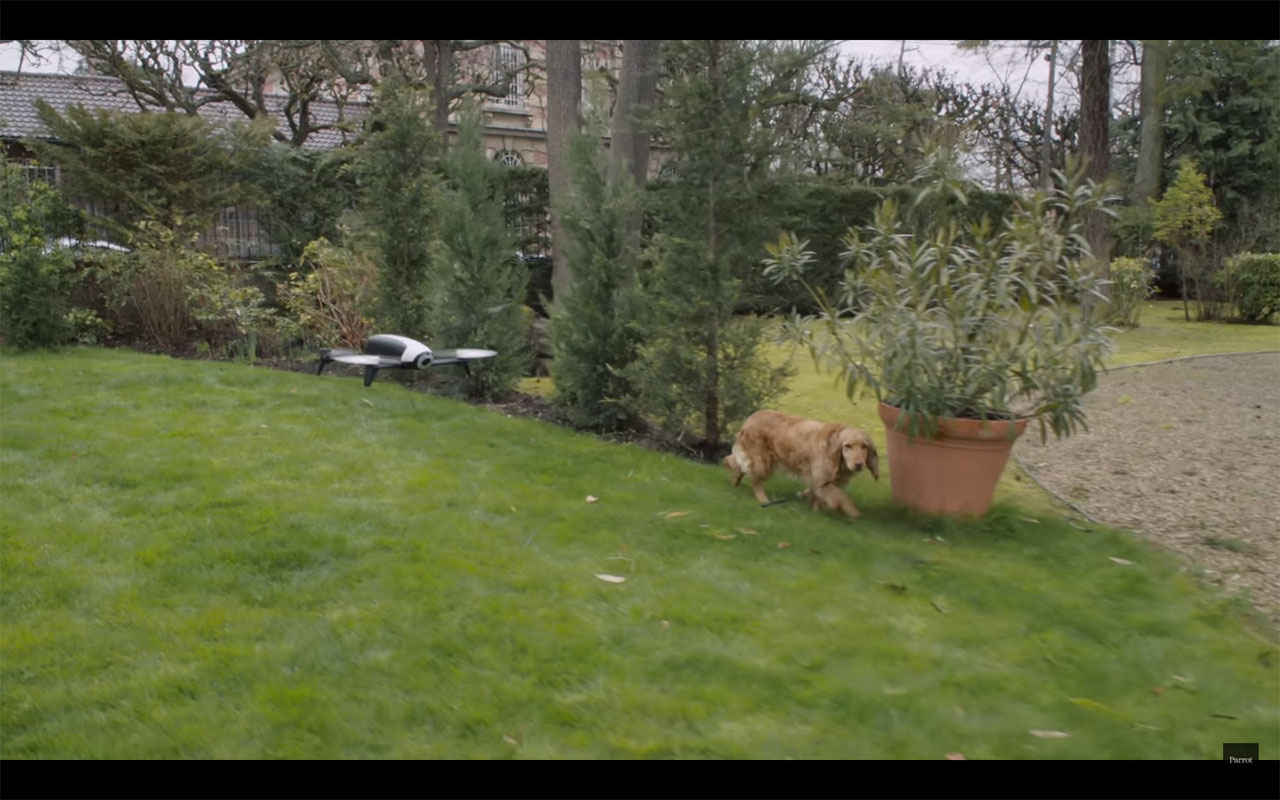 Parrot-Bebop-Dog-Walker