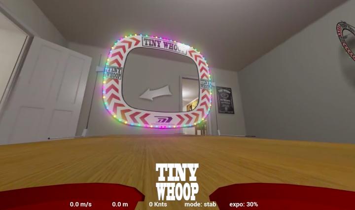 tiny-whoop-sim