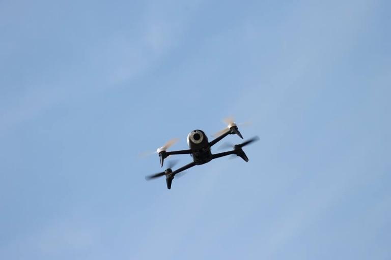 Parrot SpeedBop