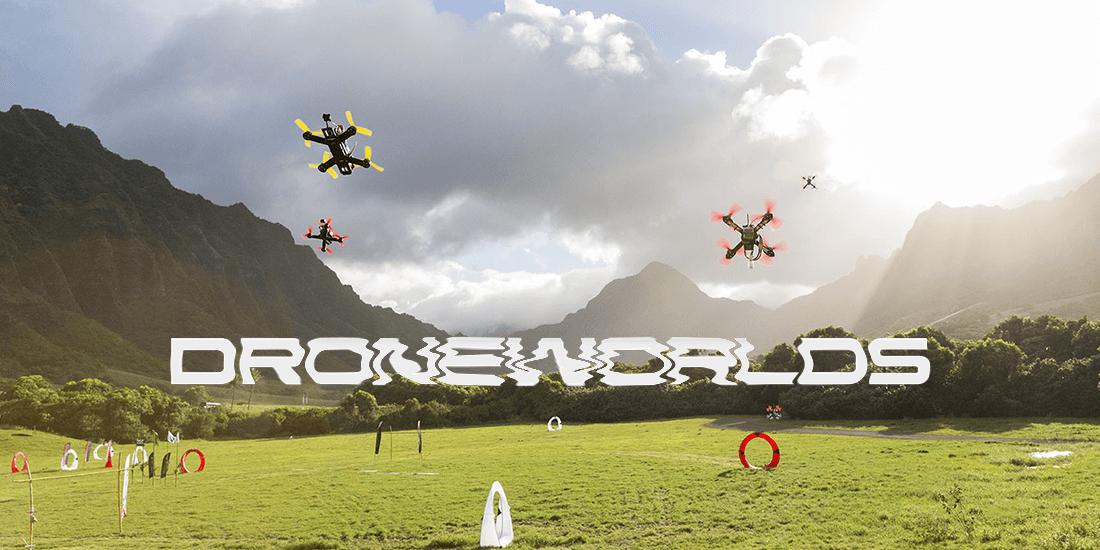 DRONE-Worlds